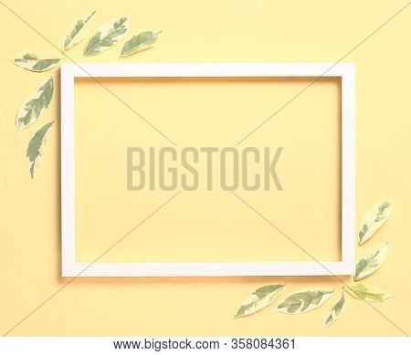 Flay Lay - Nature Background Made From White Photo Frame And Fresh Leaves