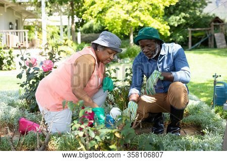 Front view of senior African American couple in the garden, kneeling and gardening together. Family enjoying time at home, lifestyle concept