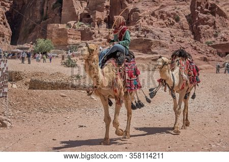 Bedouin, Jordanian With Camels. Travel Genre Photography In Petra, Jordan