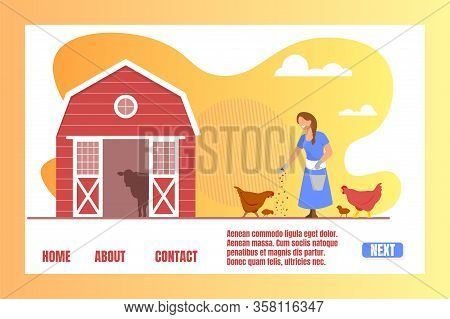 Girl Care Of Birds On Farm. Farmer Girl Character In Working Robe Feed Chicken Near Barn, Agricultur