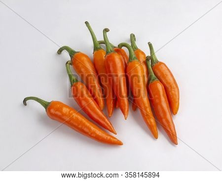 Bunch Of Chili Peppers, Orange Color Isolated On White Background