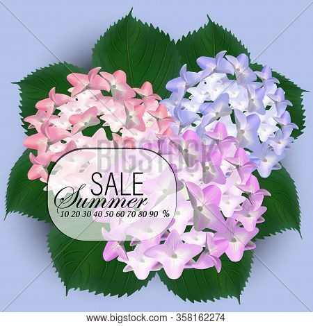 Beautiful Purple Flower Of Hydrangea. Wedding Card And Engagement Announcement. Invitation Card Temp