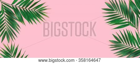 Creative Flat Lay Top View Of Green Tropical Palm Leaves On  Pink Paper Background. Copy Space For Y