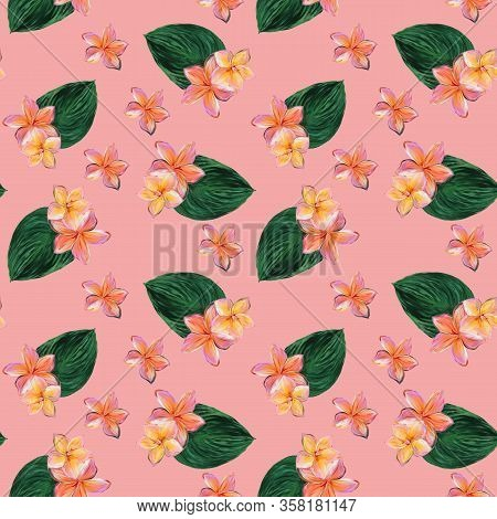 Frangipani Plumeria Tropical Flowers On Pink Background. Seamless Pattern Background. Tropical Flora