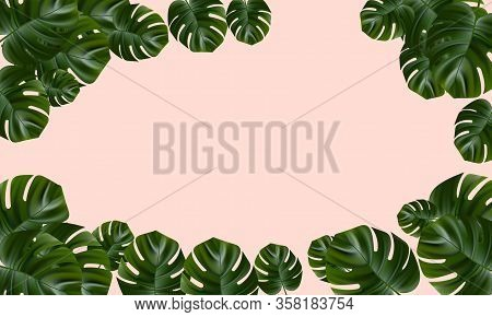 Tropical Forest. Jungle Background Flower And Palm. Vector Floral Illustration. Exotic Tropical Jung