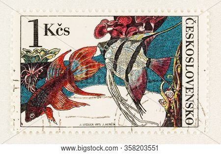 Seattle Washington - March 27, 2020: Close Up Of Used Czechoslovakia Postage Stamp Featuring Popular