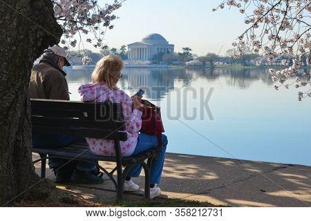 Washington DC / United States - APRIL 11 2014: People enjoy Cherry Blossom Festival in tidal basin - Washington DC United States