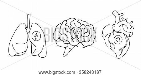 Line Art Style Drawing, Stickers Design Of Lungs, Hearts And Brains Icons Black And White Line Art D