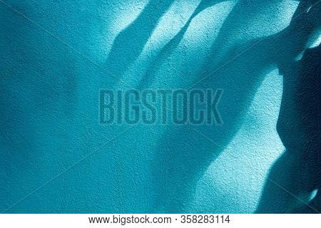 Shadow Leaf On Blue Concrete Wall Background
