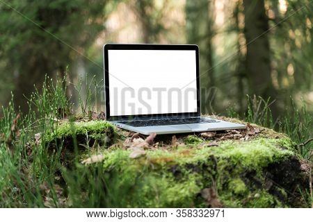 Laptop Outside Concept. Empty Copy Space, Blank Screen Mockup. Soft Focus Laptop In Nature Backgroun