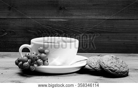 Ceramic Cup Hot Fresh Brewed Tea Beverage. Health Care Folk Remedies. Drink Aromatic Rowanberry Beve