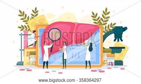 Detailed Medic Examination Internal Organ, Liver. Doctor Examine Through Magnifying Glass Harmful Fo