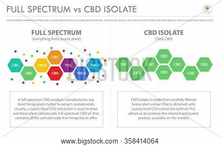 Full Spectrum Vs Cbd Isolate Horizontal Business Infographic