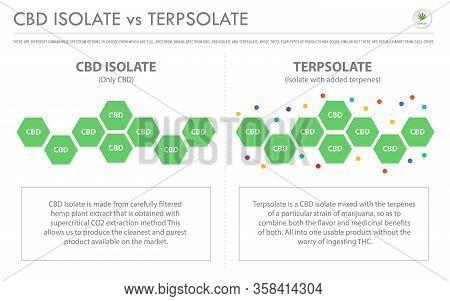 Cbd Isolate Vs Terpsolate Horizontal Business Infographic