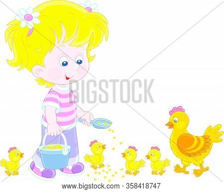 Little Girl Farmer Standing With A Bucket Of Feed Grain And Feeding A Merry Brood Of Small Yellow Ch