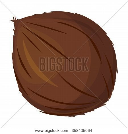 Coconut Vector Icon.cartoon Vector Icon Isolated On White Background Coconut.