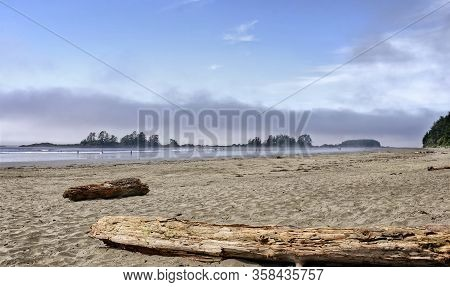 Driftwood On The Sandy Pacific Coast.  Ocean Waves On The Background. Blue Sky And Water Mist Over T