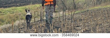 A Man With A Gun In His Hands And An Orange Vest On A Pheasant Hunt In A Wooded Area In Cloudy Weath