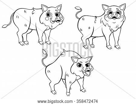 Cute Cartoon Wild Boars Vector Coloring Page Outline. Hogs In Different Postures. Coloring Book Of F