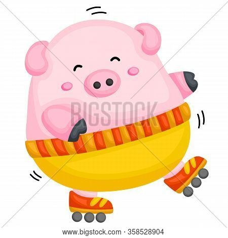 A Fat Pig Playing Roller Blade Happily