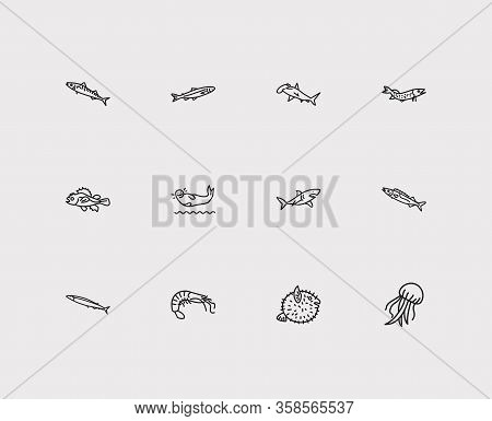 Fauna Icons Set. Saury And Fauna Icons With Harbor Seal, Pike Fish And Gemfish. Set Of Cartoon For W