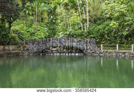 Bridge Spanning Stream At Edge Of Pool On Bano De Oro Trail In El Yunque Rainforest Of Puerto Rico