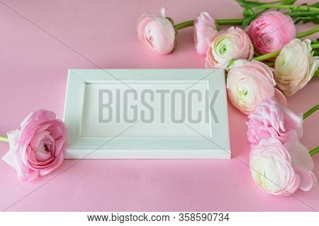 Spring Flowers Ranunculus Decorate Greeting Card . White Frame With A Space For Text, Pastel Pink Ra