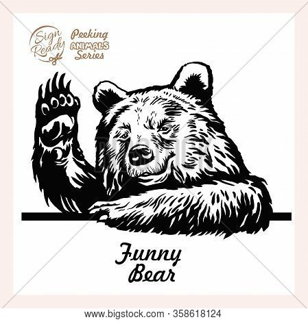 A Bear Waves Cheerfully, Friendly Grizzly Looks Out From Behind The Fence And Waves - Face Head Isol