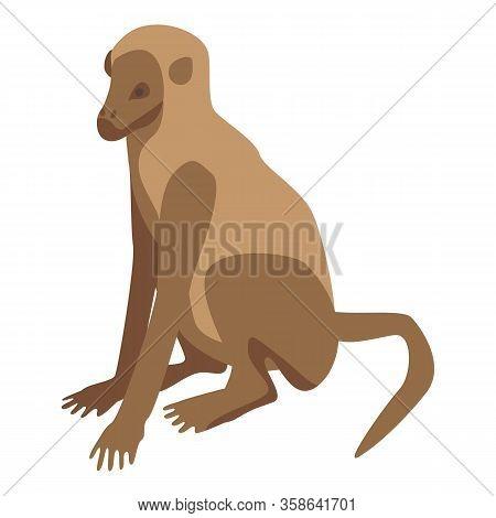 Zoo Monkey Icon. Isometric Of Zoo Monkey Vector Icon For Web Design Isolated On White Background