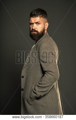 Feeling Cool And Confident. Brutal Look Of Modern Businessman. Hipster With Brutal Bearded Face. Bea