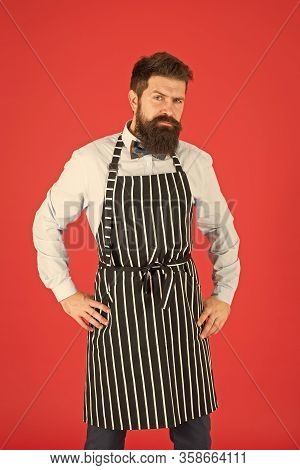Male Cooking. Bearded Man In Chef Apron. Brutal Waiter On Kitchen. Mature Man Beard Red Background.