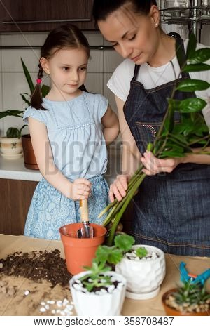 Houseplant Growing. Mom And Daughter Transplant Plants In A New Pot. Woman And A Preschool Girl Are