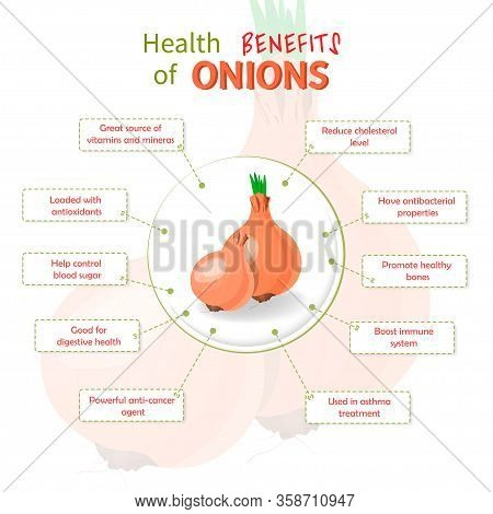 Health Benefits Of Onions. Onions Nutrients Infographic Template Vector Illustration. Fresh Fruits