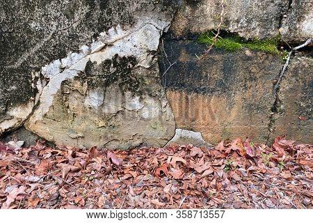 Retro Stone Warehouse Wall Moss Dead Fall Leaves