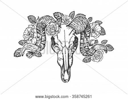 Ram Skull Decorated With Roses Vector Sketch. Animal Skull With Horns Decorated With Flowers Isolate