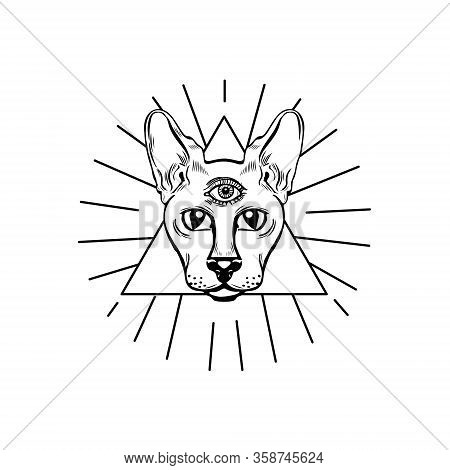 Three Eyed Oracle Cat Hand Drawn Illustration. Cat Of Providence In Triangle Isolated On White Backg
