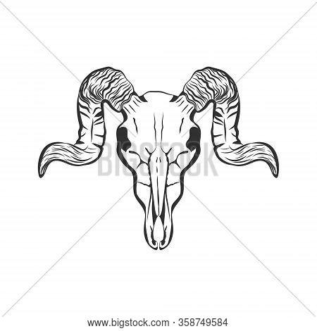 Ram Skull Hand Drawn Vector Sketch. Animal Skull With Horns Isolated On White Background. Skull Tatt