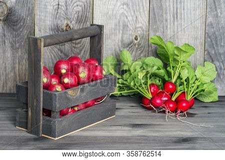 Red Radish In A Wooden Box On The Background Of A Bunch Of Radish With Green Tops On A Wooden Backgr