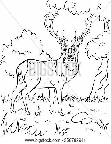 Coloring Page Of Cute Cartoon Deer. Vector Image With Nature Background. Coloring Book Of Forest Wil