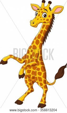 Vector Illustration Of Cute Giraffe Cartoon Isolated On White Background