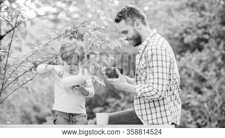 Personal Example. Father Teach Son Eat Natural Food. Little Boy And Dad Eat. Nutrition Kids And Adul