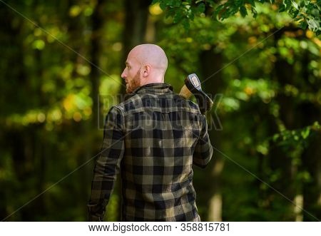 Lumberjack Carry Ax. Bald Woodsman Worker. Live On Rancho. Concept Of Masculinity. Bearded Hipster C