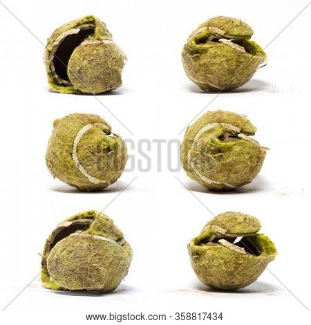 Many Chewed tennis ball against white background
