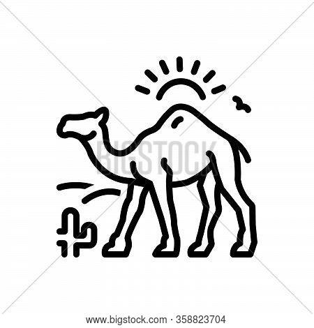 Black Line Icon For Camel-in-desert-with-sun Camel Desert Dune Landscape Natural Journey Sand Cactus