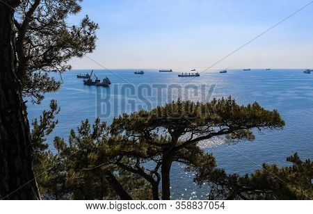 hike to the wild beach and camping, with views of cargo ships, the outskirts of the resort of Gelendzhik and the neighboring city of Novorossiysk. Black sea coast