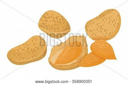 Heap Of Brown Nuts Isolated On White Background. Small Almond Core Inside Nutshell. Edible Product U