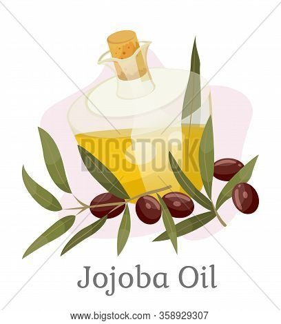 Glass Vessel Golden Liquid Inside, Jojoba Oil. Branch With Green Leaves And Brown Drupes Near Glassw