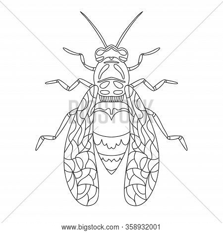 Wasp Bee Outline Realistic. Vector Graphic Illustration. Summer Vector Illustration. Coloring Book.