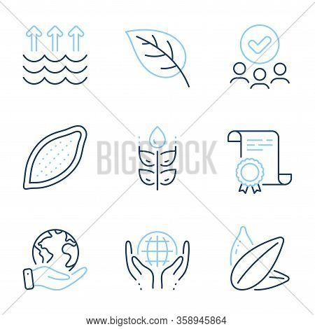Gluten Free, Cocoa Nut And Sunflower Seed Line Icons Set. Diploma Certificate, Save Planet, Group Of