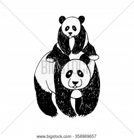 Poster With A Panda And Its Baby In A Sketch Style. Happy Little Cute Panda. Adorable Mammal Animal.